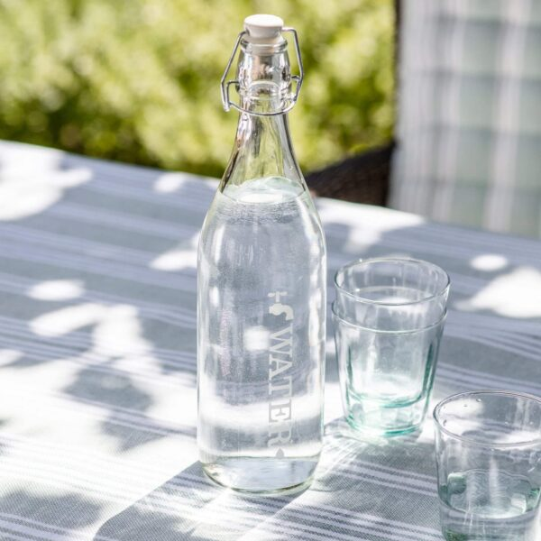 Glass Water Bottle 2