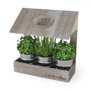 Kitchen Garden Windowsill Herb Flower Pots Planter Set