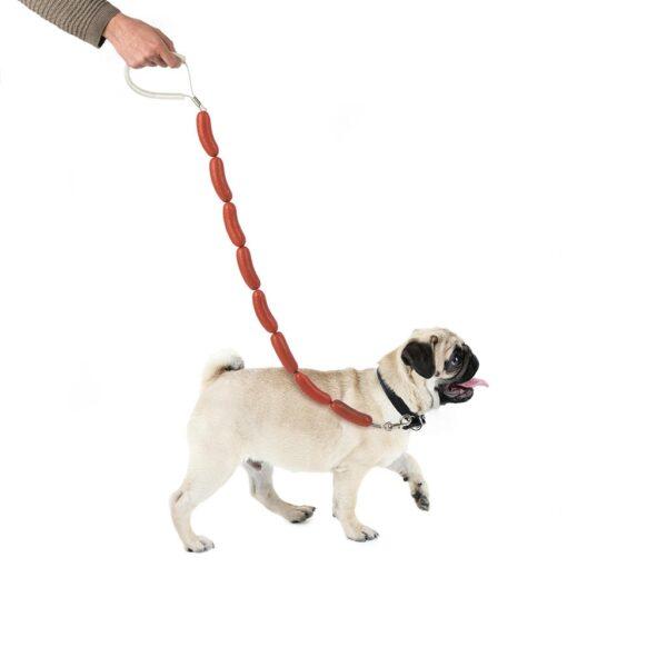 Hot Dog Leash