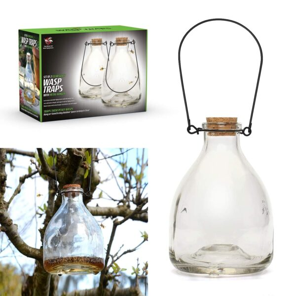 Double Pack Wasp Catcher 1
