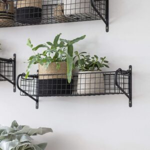 Medium Shelf