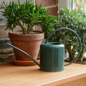 Green Indoor Plant Watering Can 1.4L
