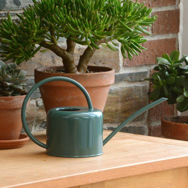 Small Dark Green Galvanised Steel Vintage 1.1L Indoor Watering Can