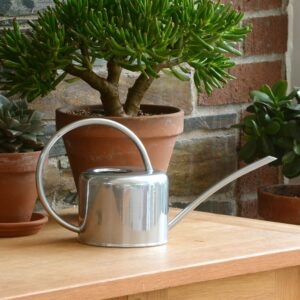 Small Silver Galvanised Steel Vintage 1.1L Indoor Watering Can
