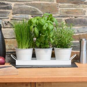Set of 3 Indoor Metal Plant Pots & Tray
