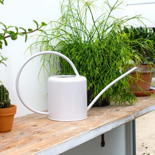 White Chalk Indoor Plant Watering Can 1.4L